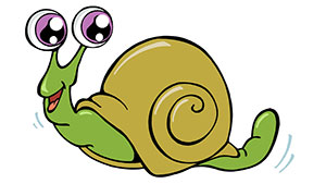 snail facts for kids