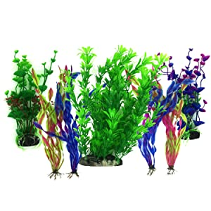 Aquarium Plants Artificial vs. Real: Which Is Better?