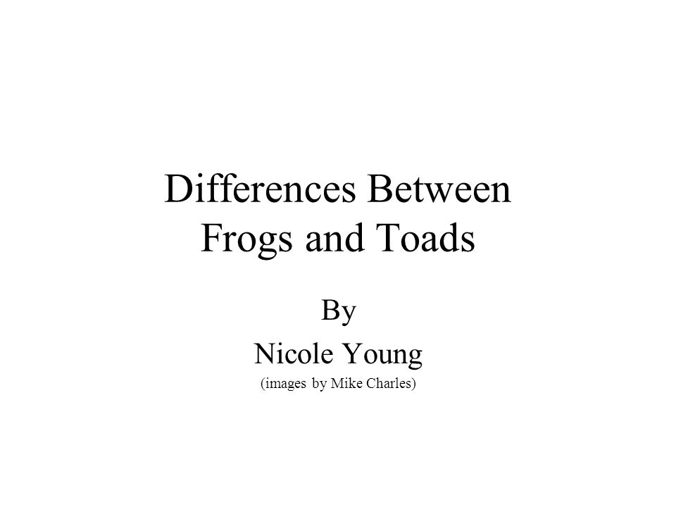 Differences Between Frogs and Toads