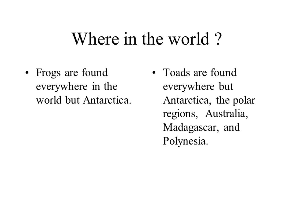 Where in the world Frogs are found everywhere in the world but Antarctica.